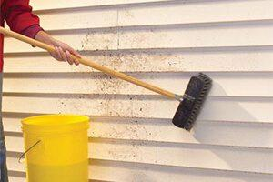 Vinyl Siding Cleaner