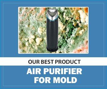 Best Air Purifier for Mold - GermGuardian AC4825