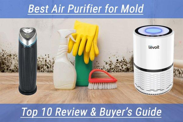 Reviews Air Purifier for Mold
