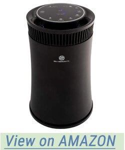 SilverOnyx Air Purifier for Smoke and Smokers