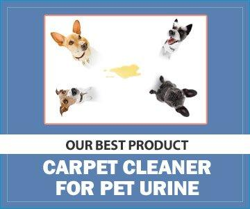 Pet Stain and Odor Miracle: Best Enzymatic Cleaner with the Leaping Bunny Certification