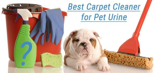 what is the best carpet cleaner for pet urine