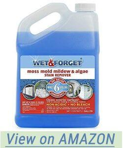 Wet and Forget 10587 1 Gallon Moss