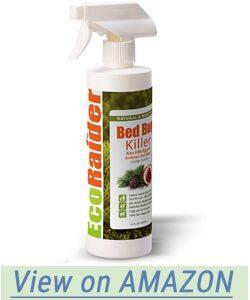 EcoRaider Bed Bug Killer Spray Jug 16 Fl Oz review