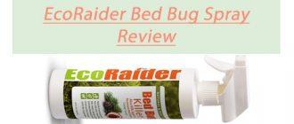 EcoRaider Bed Bug Killer Spray Review